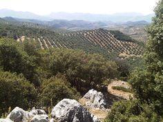 ...y entre los olivos caseríos blancos. Sierra Mágina, Jaén