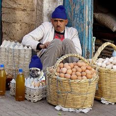 Egg entrepreneur (& doggy), Morocco