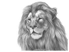 Roaring Like a Lion by GrzediKrk on DeviantArt