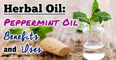 Top 10 Uses of Peppermint Essential Oil