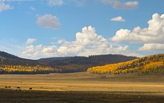Great ATV ride through Horse Valley in Garfield County, Utah