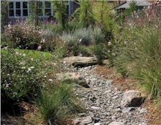 pictures of dry creek beds in landscaping - Google Search