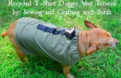 Feature Friday 10 Recycled Crafts and Upcycled Projects {Earth Day ideas} - DIY Recycled T Shirt Doggie Vest
