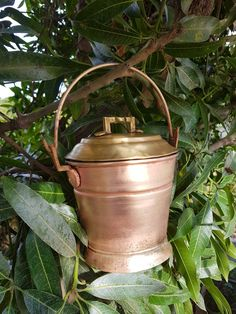Antique mini brass snack bucket with lid Antique Decor, Antique Brass, Bucket With Lid, Copper Vessel, Still Life Photos, Miniature Kitchen, Food Themes, Back To Nature, India Travel