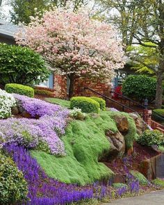 When choosing ground cover for a hillside garden, you need to use the same criteria as you do for flat land. There are several good ground cover plants for a hillside garden. Landscaping A Slope, Landscaping With Rocks, Landscaping Ideas, Mailbox Landscaping, Landscaping Retaining Walls, Hillside Garden, Sloped Garden, Sloped Backyard, Lush Garden