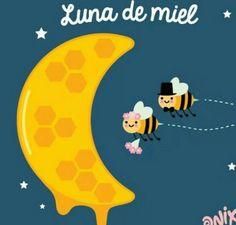 Luna de miel...