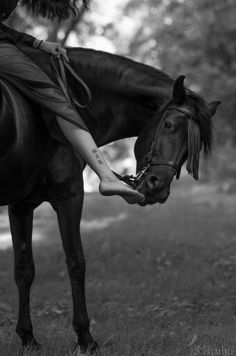 beauty is in the simple things Pictures With Horses, Horse Photos, Horse Girl Photography, Equine Photography, Horses And Dogs, Wild Horses, Horse Riding Quotes, American Quarter Horse, Horse Barns