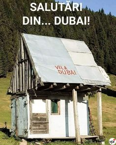 Picts, Cellphone Wallpaper, Funny Me, Really Funny, Romania, Funny Pictures, Funny Pics, Gazebo, Dubai