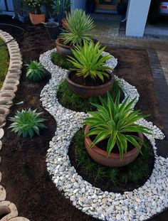 Small Backyard Landscaping, Landscaping With Rocks, Landscaping Plants, Landscaping Ideas, Backyard Ideas, Backyard Patio, Courtyard Landscaping, Mailbox Landscaping, Backyard Designs