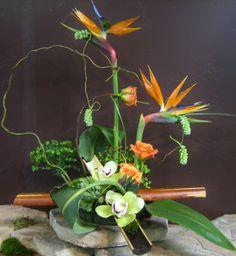 The Essential Marketing Bundle for Florists includes all the critical tools a florist needs to build your online brand. Diy Crafts, Wreaths, Creative, Floral Designs, Home Decor, Flower Arrangements, Floral Arrangements, Plants, Guys