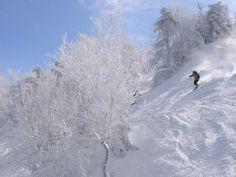 sutton skiing