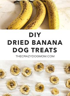 Did you know bananas are healthy for dogs to eat? You can easily make these DIY dried banana dog treats for both you and your dog to enjoy! Banana Dog Treat Recipe, Easy Dog Treat Recipes, Banana Treats, Dogs And Bananas, Dried Bananas, Best Treats For Dogs, Diy Dog Treats, Best Food For Dogs, Best Puppy Food