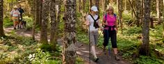 People enjoying the hiking trails at Fundy National Park; June 18 or 19