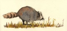 """Funny raccoon running cute grass in the forest animal 8x4"""" 21x9.5 cm art original Watercolor painting by Juan bosco"""
