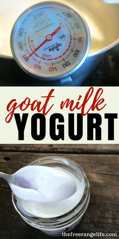 Goat Milk Recipes: Learn how to make your own Goat Milk Yogurt at home! Make Your Own Yogurt, Making Yogurt, Goat Milk Recipes, Homemade Yogurt Recipes, Cheese Recipes, How To Make Cheese, Making Goat Cheese, Milk Ice Cream, Raw Milk