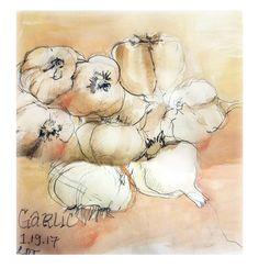 Garlic watercolor on paper 2017. Available . .  #handmade #garlic #foodie #foodporn #healthy #watercolor #painting #sketchoftheday #art #arte #veggies #ldtdraw #laurendoyleart #phillyarts #cheflife #chef #cheftable #cook #sepia #drawing @lauren_doyle