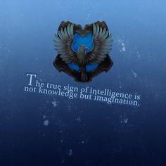 Intelligence = imagination