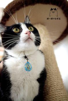 畢幸不幸轉轉轉: 丼丼公主的「飛行石」