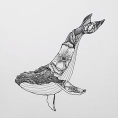 Whale Drawing IdeaYou can find Art drawings and more on our website. Art And Illustration, Illustration Inspiration, Whale Tattoos, Killer Whale Tattoo, Killer Whales, Whale Art, Desenho Tattoo, Pen Art, Cool Drawings