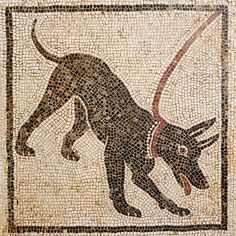 """Cave canem"" (beware of the dog) mosaic. MAN of Naples Mosaico custodito al Museo Archeologico Nazionale di Napoli Mosaïque « Cave canem » (attention au chien)  #pompeii #herculaneum #ruins #scavidipompei #pompei #museum #roman #ancient #excursions #travel #italy #faunopompei #vesuvius #amazing #street #progettopompei #man #naples #archeologicalmuseum"