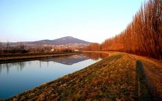 Picture from city park. Nitra, Slovakia
