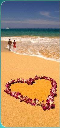 Heart Shaped Lei on Beach Photographic Print Samana, Creative Valentines Day Ideas, Beach Posters, Travel Posters, I Love Heart, Heart Pics, I Love The Beach, Am Meer, Heart Art
