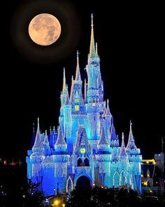 New walt disney quotes disneyland magic kingdom Disney Dream, Cute Disney, Disney Magic, Disney Parks, Disney Movies, Disney Vacations, Disney Trips, Disney Travel, Chateau Disney