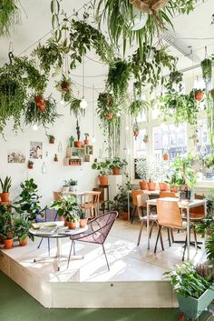 26 Gorgeous Interior Design with Indoor Plants As discussed before, interior decoration is seldom taken on because of the light of center. Indoor plants ought to be an essential part of every interior. Cozy Coffee Shop, Coffee Shop Design, Coffee Barista, Coffee Humor, Starbucks Coffee, Best Indoor Plants, Cool Plants, Patio Plants, Indoor Trees