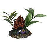 Blue Ribbon Pet Products ABLEE1050 Fire Coral Cave with  >>> Want additional info? Click on the image.