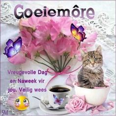Goeie Nag, Goeie More, Afrikaans Quotes, Good Morning, Messages, Words, Lilac, Language, Van