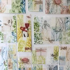 Trudy Rice specialises in solar plate etching and currently works and lives in Melbourne. Her colourful, layered works celebrate the beauty of the natural world and seek to embody the intricate...