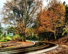 A rota romântica é um conjunto de estradas que ligam a capital gaúcha à região de Gramado, passando por várias cidades turísticas, cada uma com seus atrativos característicos. As estradas que compõem a rota são a BR 116, a RS 235, a VRS 865, a VRS 873 e a Estrada para Linha Nova, o que …