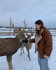 Winter Time, Winter Season, Fall Winter, Winter Snow, Ski Season, Skandinavian Fashion, Winter Christmas, Xmas, Christmas Deer