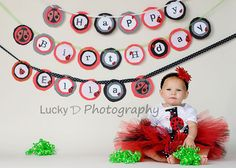 First birthday picture - ladybug banner