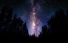 фото, обои, небо, лес, звёзды, млечный путь, Пейзажи, ночь, космос