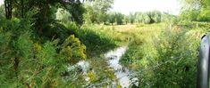 Afbeeldingsresultaat voor waterzuivering moerenburg