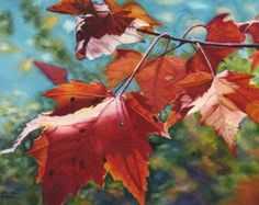 Autumn Leaves Art Watercolor Painting print of original by Cathy Hillegas, red maple leaves, orange, green blue