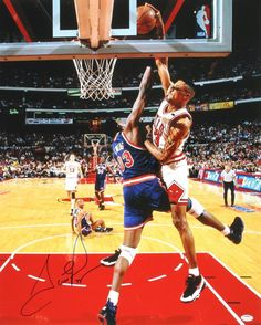 Scottie Pippen Photo Print Poster by 11 inches High Quality Ewing Dunk Michael Jordan Pictures, Jordan Photos, Sports Basketball, College Basketball, Basketball Videos, Basketball Stuff, Basketball Pictures, Basketball Shirts, Scottie Pippen