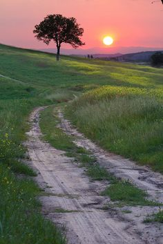 Tuscany sunset. Where I'll live my last years if I never find a man