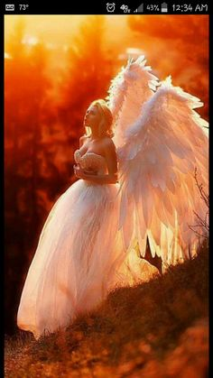 Have yourself a merry christmas with angel visitation! Photo by Maria Lipina. Angels Among Us, Angels And Demons, Fallen Angels, Guardian Angels, Color Splash, Color Pop, Angel Wings Costume, Splash Images, Angel Images