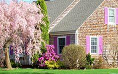 Landscape Color Schemes: Exterior Color Schemes