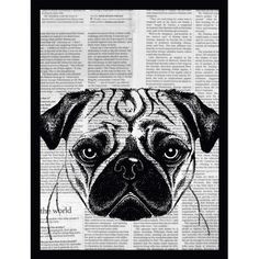 Newspaper Bulldog II Framed Graphic Art in Black G&C Interiors Painted Rock Animals, Painted Rocks, Newspaper Pictures, Canvas Art, Canvas Prints, Pet Rocks, Leonid Afremov Paintings, Framed Wall Art, Painting Prints