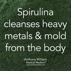 Spirulina cleanses heavy metals & mold from the body ~Medical Medium - Holistic Health