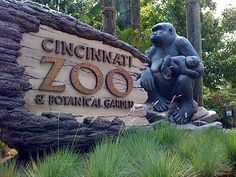 visit the Cincinnati Zoo..check!