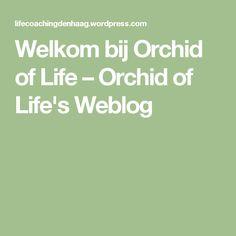 Welkom bij Orchid of Life – Orchid of Life's Weblog