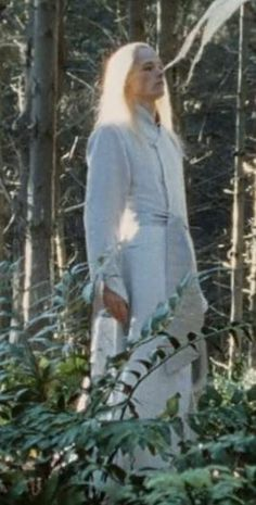 Rivendel Elf ~ The Lord of the Rings trilogy