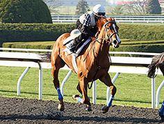 Rosalind Works Toward Kentucky Oaks