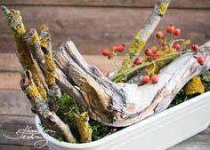 Podzimní truhlíky. Co dát do truhlíku na podzim? Inspirace a nápady na podzimní dekorace. Podzimní výzdoba truhlíků. Výroba podzimní dekorace do truhlíků. Alexa Device, Vegetables, Etsy, Decor, Autumn, Fall, Google, Image, Handmade Home Decor