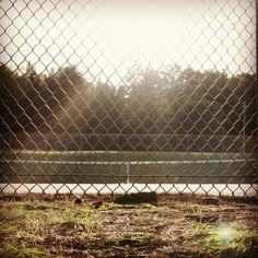 Perfect day at the office!  Journée parfait au bureau!  #tennis #tennisacademy101 #tenniscourt #tennislesson #australianopen #usopen #rolandgarros #frenchopen #daviscup #wimbledon #federer #ferrer #nadal #djokovic #murray #atp #wta