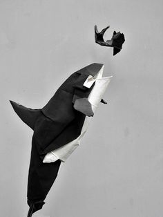 Amazing Origami Killer Whale Eating A Fish